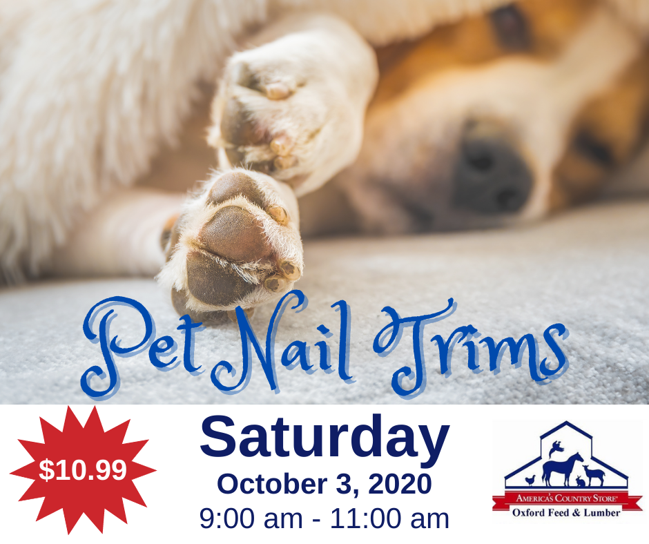 301575 - OFL - Oct Pet Nail Trims - FB Post