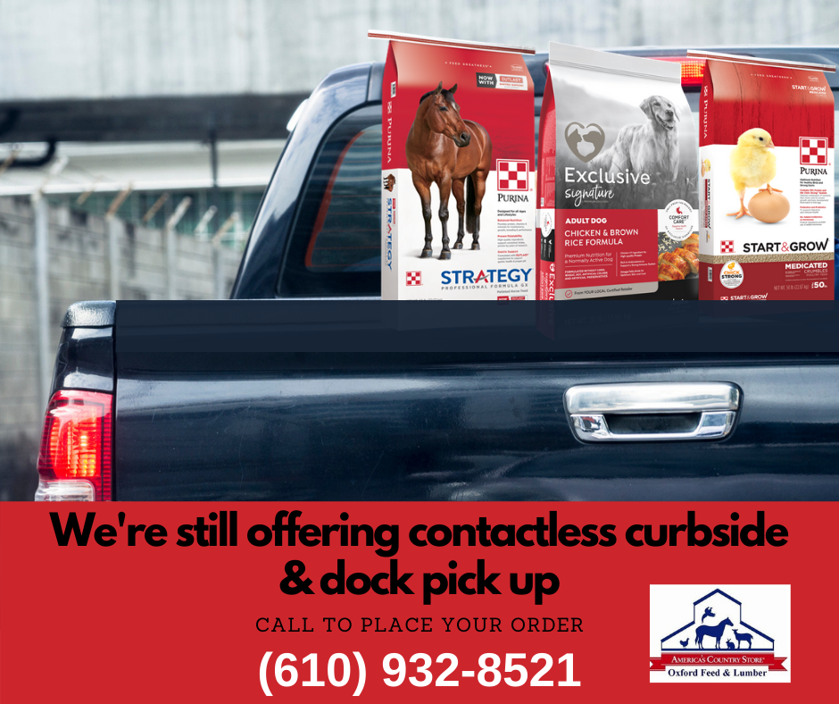 301575 OFL CURBSIDE_PICK UP POST.png (1)