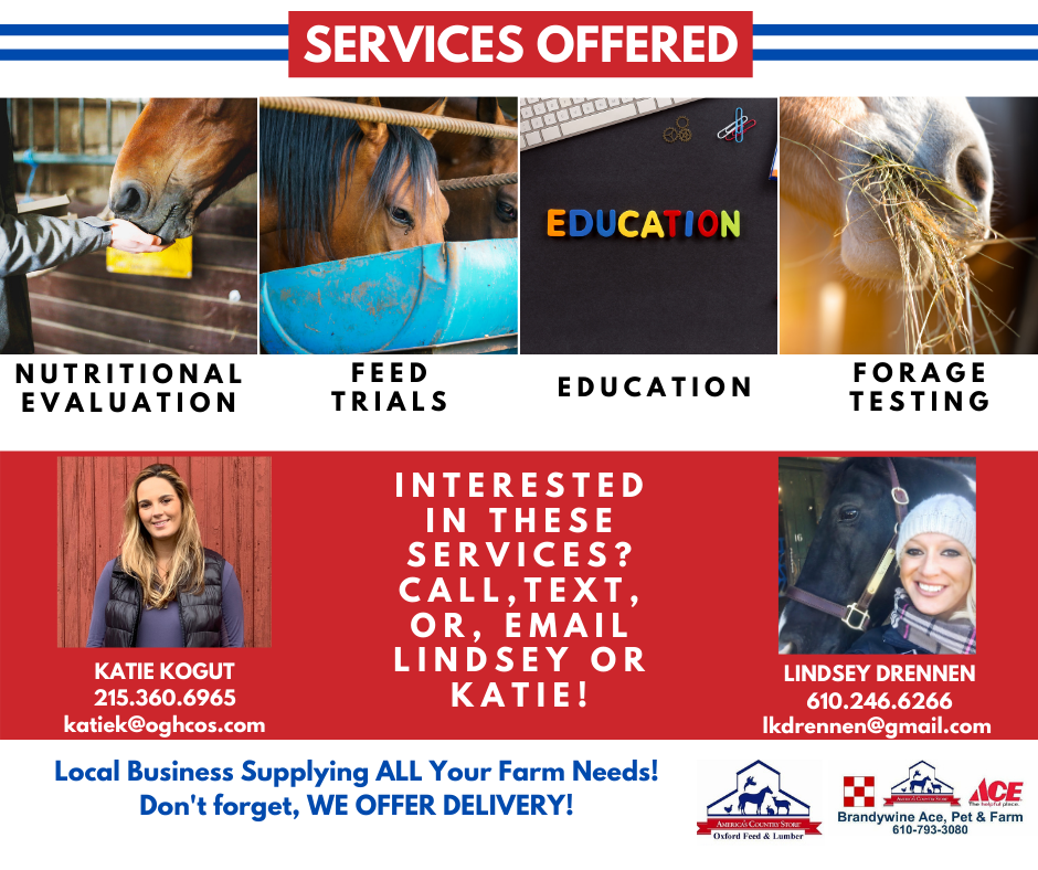 301575 - OFL - Services Offered - FB Post 2