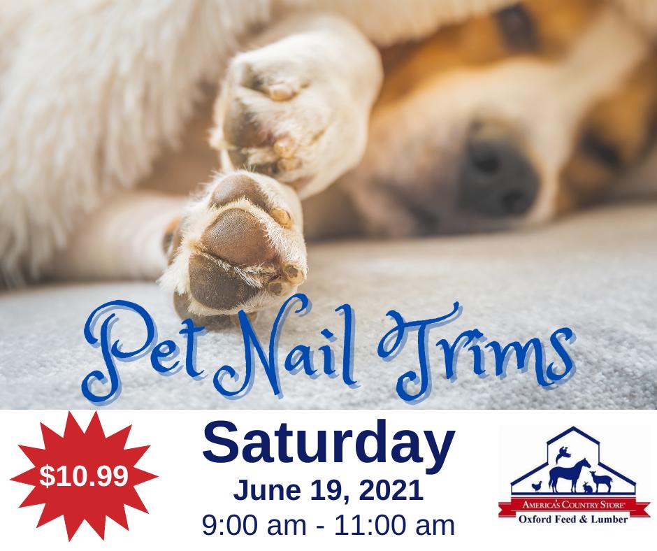 301575 - OFL - 619 Pet Nail Trims - FB Post